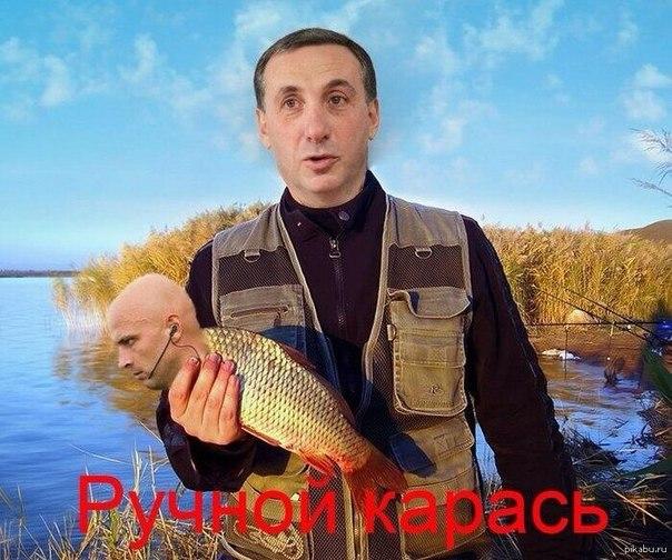 PbuQd6pMSqo.jpg